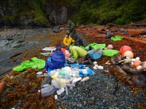 Gulf of Alaska Keeper cleanup in the Prince William Sound, 2017.