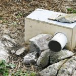 Nest Boxes for the Cassin's Auklets on the Farallon Islands