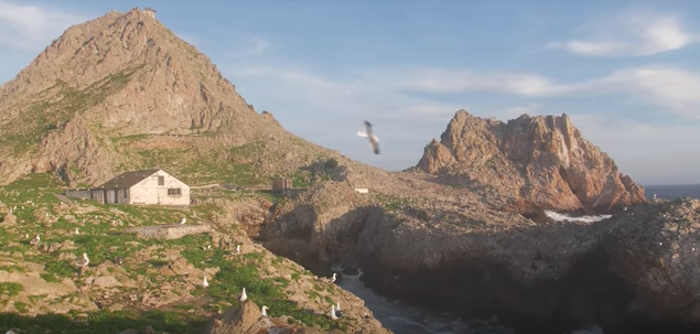 Farallon Islands Video, 2015