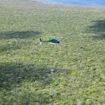 Helicopter spreading rat bait above the plateau of Henderson Island (Photo: Andrew MacDonald)